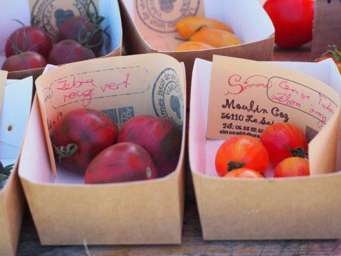Découverte-tomates