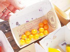 Tomates-jaunes