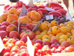 Varieté-tomates